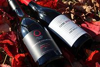 秋♪お勧めワイン